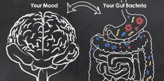 Burnout-Erschoepfung-und-der-Darm-CFS-chronisches-Müdigkeitssyndrom-Darmbakterien