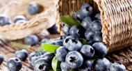 Heidelbeeren, blueberry, superfood, gesundheitsplus