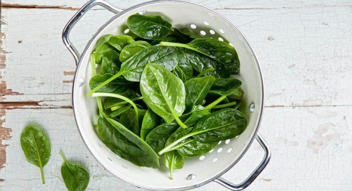 Vitamin-K-Spinat-grünes-Blattgemüse