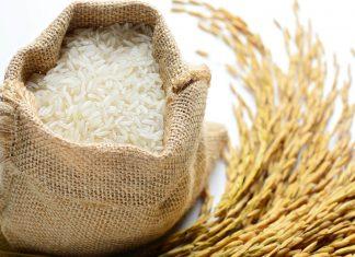 Arsen-im-Reis-das-gesundheitliche-Risiko-reduzieren