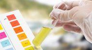 Basenpulver auf Citratbasis besser als Natron und Carbonat zum Entsäuern